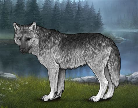 Natural Wolf Pack Alliance -- Raffle Winners Posted