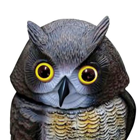 Action Owl Decoy Bird Deterrent With Moving Head   Roofing
