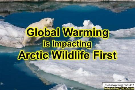 Global Warming Facts - 25 Facts about Global Warming
